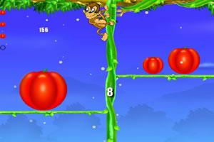 小猴定平衡