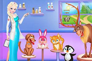 艾尔莎的宠物医院
