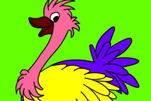 可爱鸵鸟上色