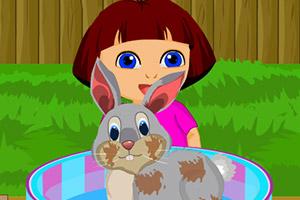 朵拉照顾小兔子